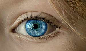 Your Eyes And Iridology