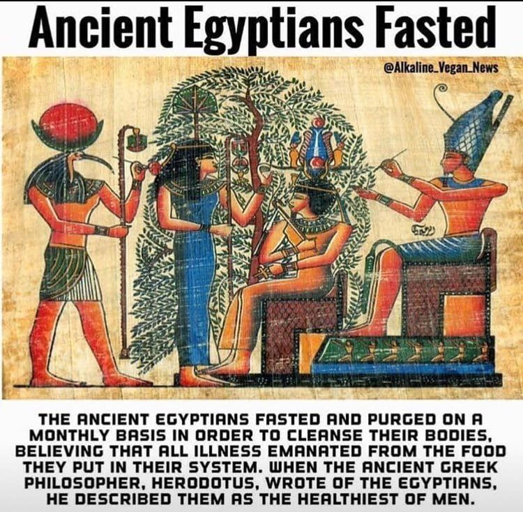 Ancient Egyptians fasted and purged their body